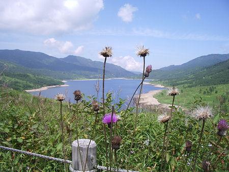 野反峠から湖を臨む
