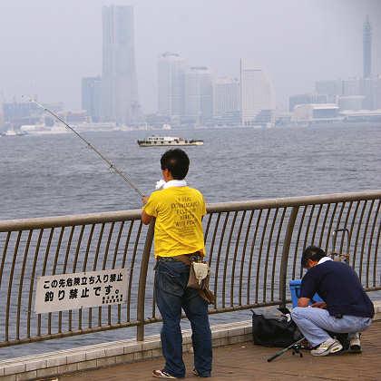 釣り禁止なのは「この先」であって、フェンスのこちら側から竿を出すのはOKなのかもしれません...他に何人もいましたから