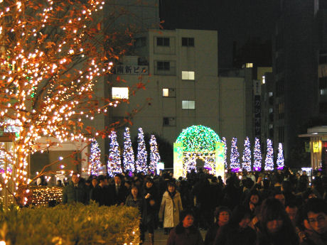 2007年12月15日撮影