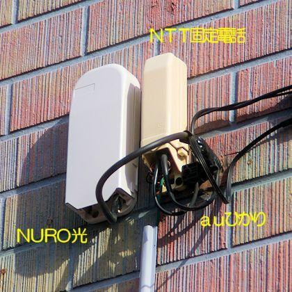 NURO2_2.jpg